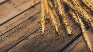 Цены на украинскую пшеницу снизились из-за повышения прогноза урожая зерновой в Австралии — трейдеры